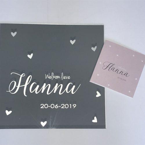 hanna-met-kaart