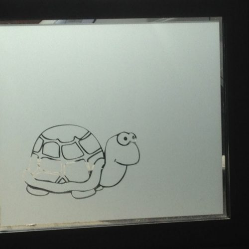 raamfolie schildpad