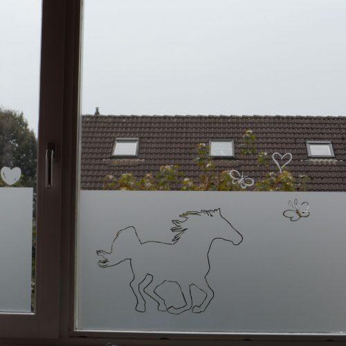 raamfolie paard